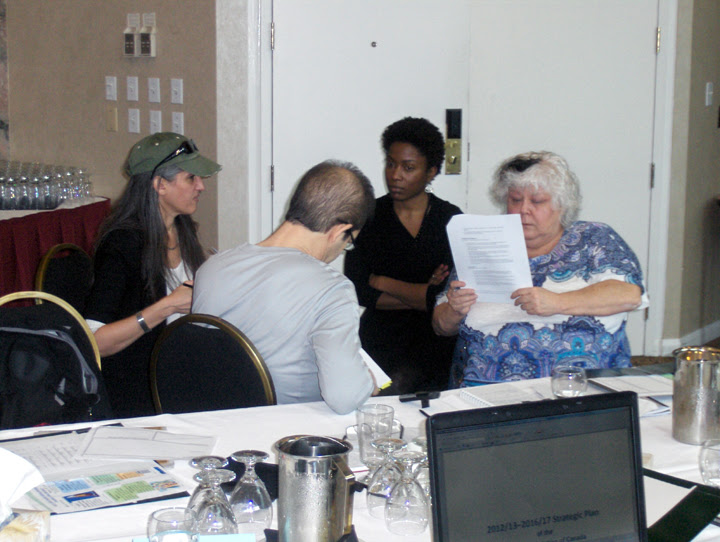 National executive council members meet in a breakout group at the NEC's March 2013 meeting