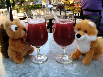 Conference mascots Squirrel and Fox enjoy a drink in the ByWard Market. Photo: Gael Spivak