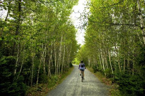 Halifax Bike Trails - Discover Halifax